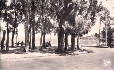 PORT-GUEYDON - La Pointe des Blagueurs
