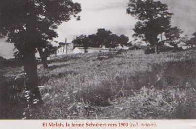 ROUFFACH El Malah - La Ferme SCHUBERT