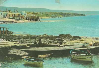 LA SALAMANDRE 1945