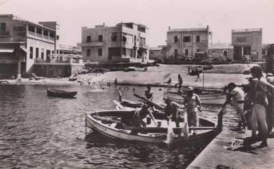 LA SALAMANDRE 1949