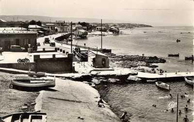 LA SALAMANDRE 1952