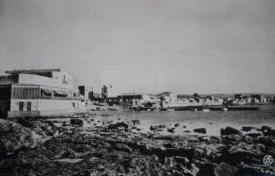 LA SALAMANDRE 1958