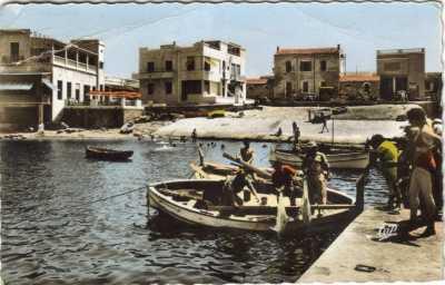 LA SALAMANDRE 1960