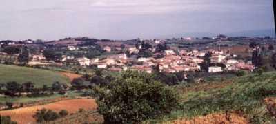 SAOULA ----   Les Pieds-Noirs de SAOULA