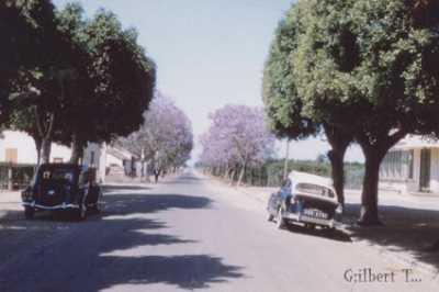 SIDI-MOUSSA - 1956
