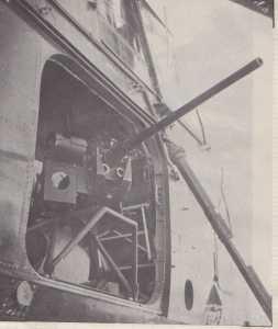 """""""BISON MARIN"""" 3 canons de 20 mm"""