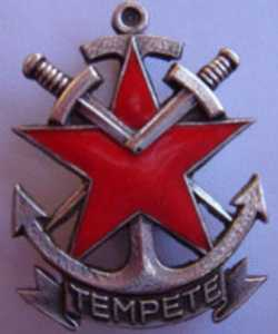 insigne du Commando TEMPETE