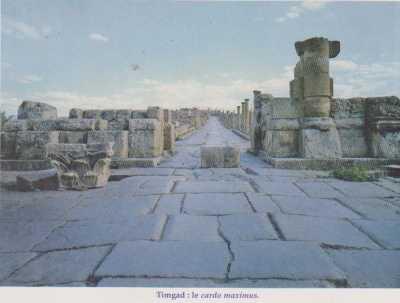 TIMGAD - La Voie Maximus