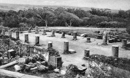 TIPASA - Ruines de la Basilique