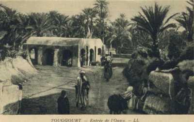 TOUGGOURT - L'Oasis