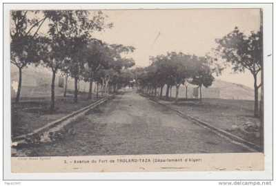 TROLARD-TAZA  Avenue du Fort
