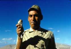 """MAROUK, d'origine marocaine avec une """"gerboise"""" dans la main"""