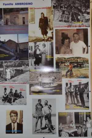 Poster de la famille AMBROSINO