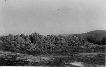 les alentours du Phare de Colombi en 1956