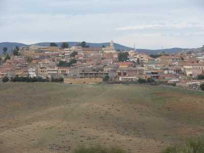2010 Route la foret Bazita vers Fromentin  En face, la viticulture