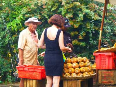 Philippe BANON et Martine RODRIGUEZ chez le marchand de bananes, annanas et litchies ....