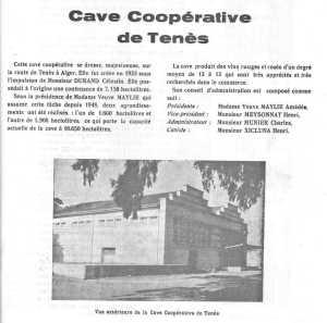 la CAVE COOPERATIVE de TENES