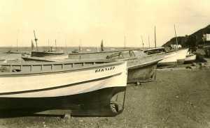 le petit Port