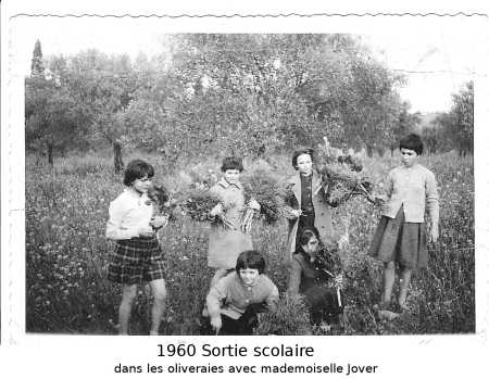 1960 - Sortie scolaire dans les oliveraies avec Mle JOVER