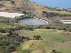 Bassin d'irrigation  sur la route de Mostaganem  (village de Dramla)