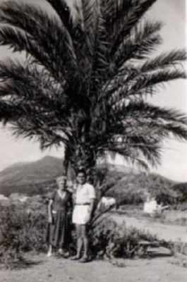 Le Palmier de la VILLA Paulette Berthe TELHA et Alix TELHA