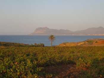 Cap Kala