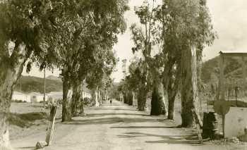 RN 11 La Route d'Alger