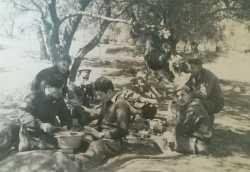 1957 - CHERFA