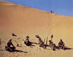 En haut de la dune un guetteur veille