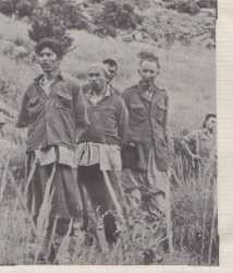 BOU-SAADA Prisonniers FLN