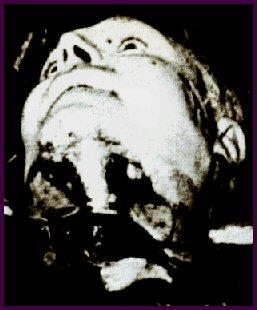 Photo-titre pour cet album: 11 Mai 1957 - à 9kms de SETIF  Assassinat de la famille BARRAL