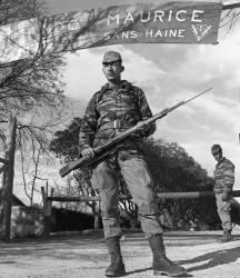 """Photo-titre pour cet album: Cdo de chasse 137 """"Maurice"""" du 454 GAAL à Saida"""