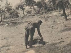 Photo-titre pour cet album: Exécution à GHARDIMAOU