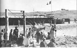 les Harkis de Oued Taga 1961