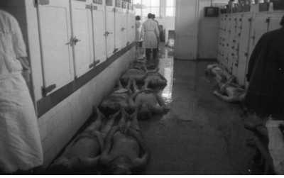 ALGER le 26 MARS 1962  La Morgue de l'Hopital MUSTAPHA  ----  Autre liste des Victimes