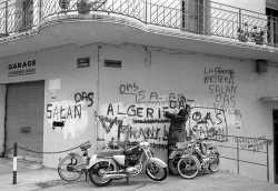 Slogans sur les murs d'Alger ----    VIDEO